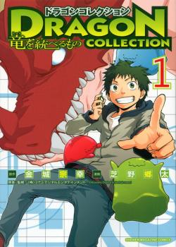 Dragon Collection: Ryuu wo Suberumono